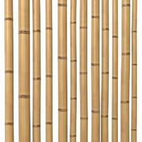 Bamboo Stem Dry oriental interior decoration